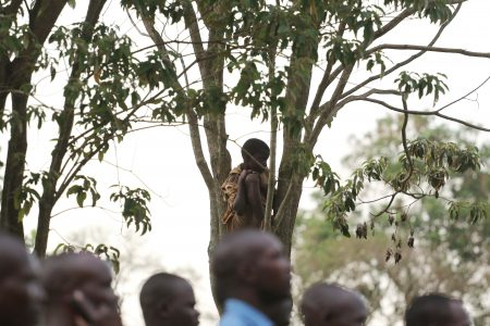 A boy climbed a tree to have a clear view during Busoga vs Kampala